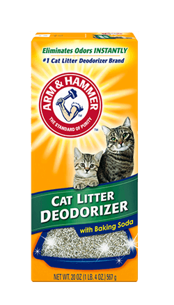 Baking Powder In Cat Litter